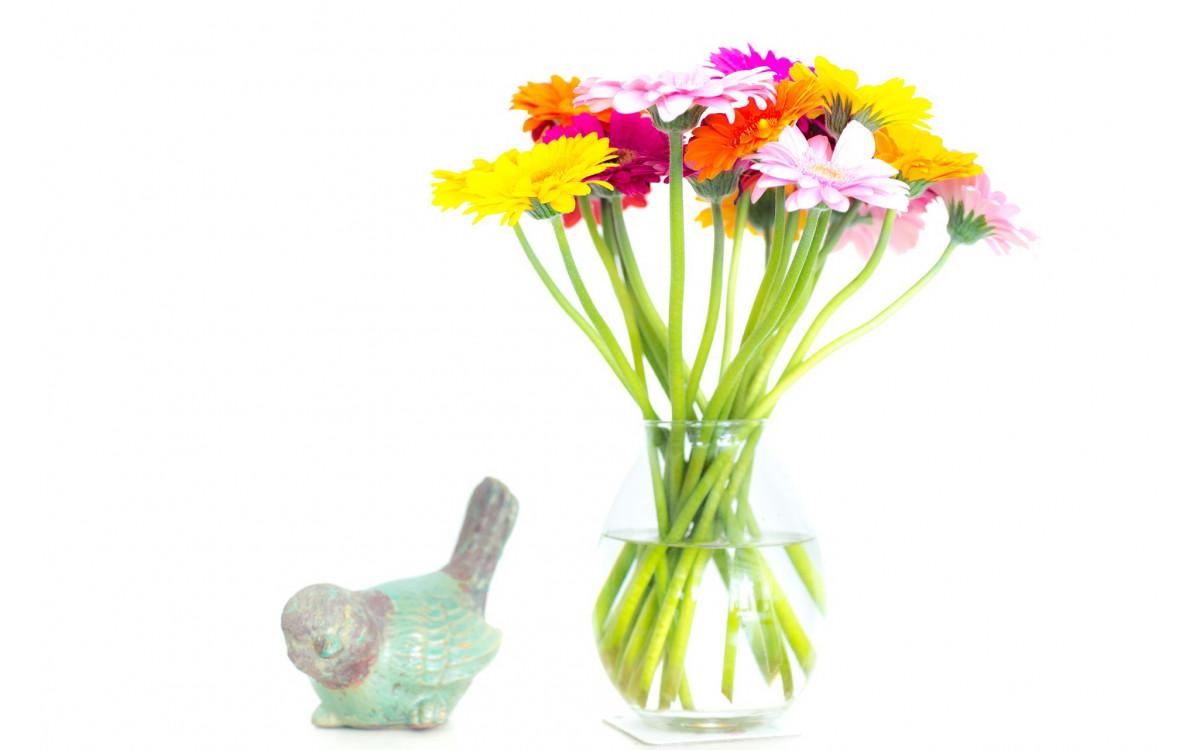 Как ухаживать за цветами в вазе?